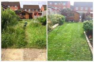 Gardener in Chelmsford
